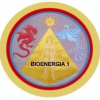 Corso di Bioenergia 1 – 1° Livello Metodo Summa Aurea® On-Line