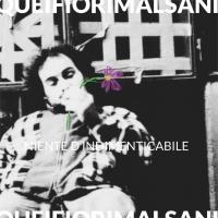 Quei Fiori Malsani al debutto discografico con Niente D'Indimenticabile: il videoclip del singolo Hadil è su youtube!