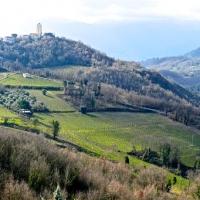Greco di Tufo, Oro d'Irpinia, Vino come cultura, economia, turismo
