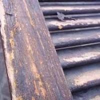 Infissi in legno: contro il degrado serve un trattamento antitarlo