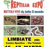 L'affascinante mondo dei rettili in Mostra al Palazzetto dello Sport di Limbiate