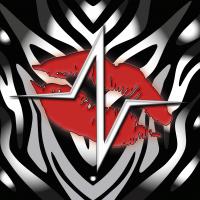 Disco d'esordio dei Vain Vipers in uscita per Volcano Records