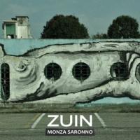 """ZUIN """"MONZA SARONNO"""" è il nuovo singolo estratto dall'album """"Per tutti questi anni"""""""