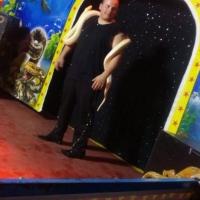 A Palagonia l'esclusivo Circo Acquatico Torres, pronto a stupire il pubblico
