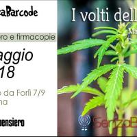 #6SenzaBarcode presenta I volti della canapa di Maria Novella De Luca