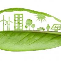 Sviluppo della sostenibilità: la leadership e la catena di fornitura