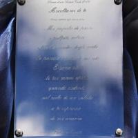 Premio d'Arte Robert Cook 2019. Giovane Arte di Essere e Poesia di Fulvia Minetti presso la Scuola Primaria di Canale Monterano di Roma