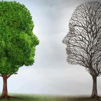 Un corso sulla resilienza e sulla gestione dello stress