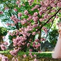 Abbigliamento donna online pink style