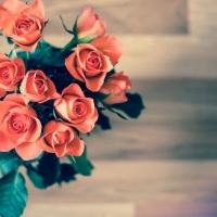Moda abbigliamento: cosa scegliere per San Valentino?