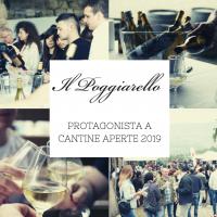 Il Poggiarello presente a Cantine Aperte 2019: successo di presenze e un'esperienza di gusto senza precedenti