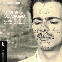 """Intervista di Alessia Mocci alla Fondazione Darcy Ribeiro per l'uscita della nuova traduzione italiana di """"Utopia Selvaggia"""""""