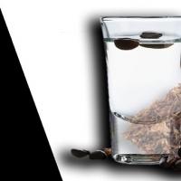 Nuovi prodotti Angolo della Guancia disponibili ora su Vape in Italy