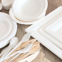 Cattel SpA si unisce alla lotta europea contro la plastica. In corso studi e progetti per la progressiva e totale eliminazione di oggetti in plastica monouso