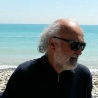 """Intervista di Alessia Mocci a Francesco S. Mangone: vi presentiamo """"La spazzola dell'ingegnere"""""""