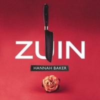 """ZUIN """"HANNAH BAKER"""" l'ultimo singolo estratto dall'album """"Per tutti questi anni"""""""