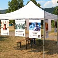 Scientology diffonde i Diritti Umani