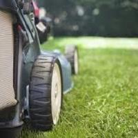 Macchine per giardinaggio: top delle vendite nel primo trimestre 2019