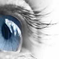 Integratori a base di vitamina A. Perché la vitamina a è così importante per i nostri occhi