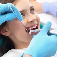 Cosa fa il Dentista?