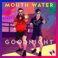 """Mouth Water """"Goodnight"""" è il singolo realizzato con la collaborazione dei due produttori parigini Sylvain Rabbath e Aurélien Fradagrada"""