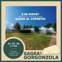 Goloserie con il principe dei formaggi: Vizzolo Predabissi (Milano) ospita dal 4 al 6 ottobre la Sagra del Gorgonzola, a ingresso gratuito
