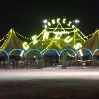 Lo show esclusivo e stellare del Circo Nelly Orfei a Reggio Calabria, tappa d'eccezione per il pubblico calabrese