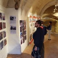 Matera proroga la mostra antologica su Pasolini curata da Sgarbi e Nugnes