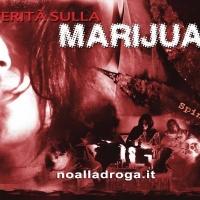 Marijuana, la droga di ingresso
