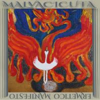 """""""Ermetico Manifesto"""", il disco d'esordio dei Malvacicuta è finalmente disponibile!"""