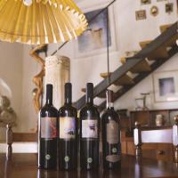 I vini naturali Falzari tra i nuovi itinerari enoturistici di Vinci