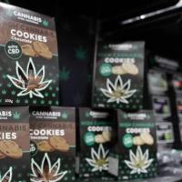 """Una recente sentenza della Cassazione rimette in discussione lo smercio di """"cannabis light"""""""