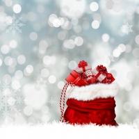 Regali di Natale 2019: i migliori gioielli online