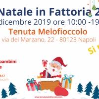 Natale in Fattoria 2 alla Tenuta Melofioccolo, si replica!