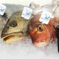 Fish from Greece, il miglior alleato per iniziare l'anno con gusto e leggerezza