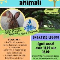 Il lunedì degli animali: ecologia e riciclo divertente
