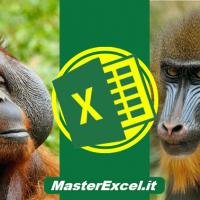 Annunciato il grande successo del primo corso di Excel che ti fa ragionare e che ti aiuta nel lavoro