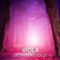 """Le Crisi Del Colle """"Viola"""""""