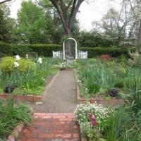 In Giardino: Abbellisci Facilmente il Giardino