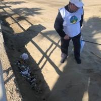 La Via della Felicità ripulisce dai rifiuti la litoranea di Ponente a Barletta