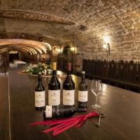 Castello di Spessa – Nuove etichette, tre linee di vini, visite in cantina e a breve una Spa con vinoterapia