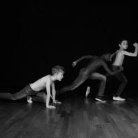 La danza e i suoi artisti: per lo Stato ? Gli ultimi in classifica