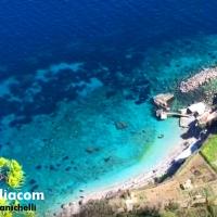 """Capri. La Natura non si ferma, fascino e Suggestione """"A picco sul mare"""" in pieno lockdown"""