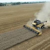 Meccanica agricola e Covid-19: gli scenari per il 2020 sono poco rassicuranti