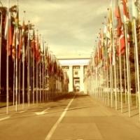 Video sull'articolo 23 della Dichiarazione Universale dei Diritti Umani delle Nazioni Unite