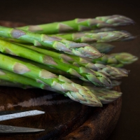 Qual è la stagione per la raccolta degli asparagi?