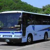 Turismo: bus, il settore e' in rivolta in arrivo lo sciopero fiscale