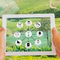 Agricoltura intelligente: la CAI presenta alla Camera il suo piano strategico