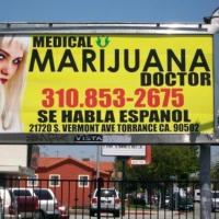 Gli effetti nefasti della commercializzazione della marijuana