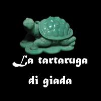 """""""La tartaruga di giada"""" L'ultimo romanzo giallo di Aurelio Armio"""